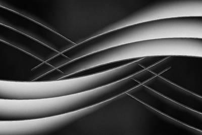 Monochrome Wall Art - Photograph - Interlaced by Jutta Kerber