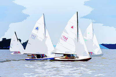 Photograph - Interlakes In The Cattail Regatta by Michael Arend