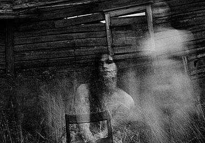 Photograph - International House Haunters by Jim Williams