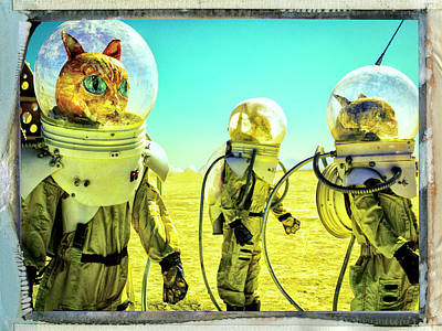 Photograph - Interstellar Rat Patrol by Dominic Piperata