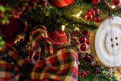 Photograph - Into A Christmas Tree by Jennifer White