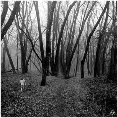 Photograph - Into A Misty Wood by Wayne King