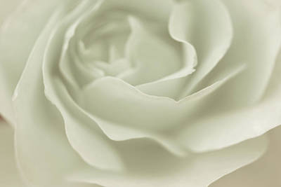Purity Photograph - Into Calm by The Art Of Marilyn Ridoutt-Greene