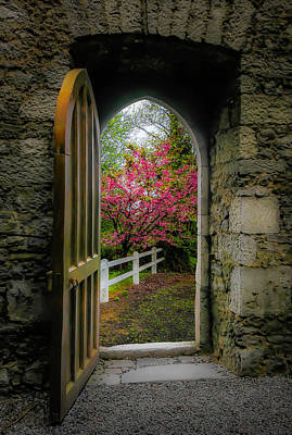 Photograph - Into Irish Spring by James Truett