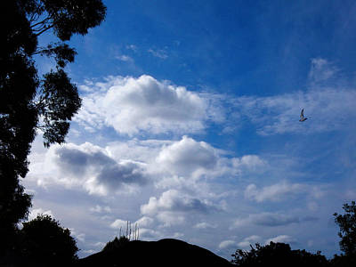 Photograph - Into The Clouds by Mark Blauhoefer