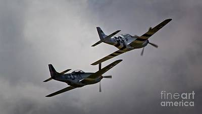 Into The Fight Together 2011 P-51 Mustangs At Chino Air Show Original by Gus McCrea