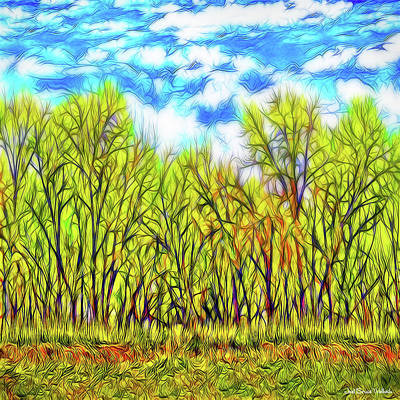 Digital Art - Into The Green Forest - Boulder County Colorado by Joel Bruce Wallach