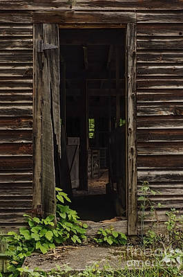 Photograph - Into The Hog Barn by Debra Fedchin