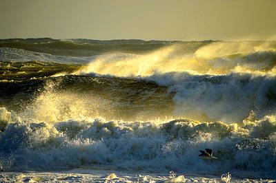 Photograph - Into The Light - Cape Cod Ocean by Dianne Cowen