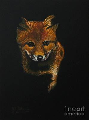 Painting - Into The Light......fox Kit by Bob Williams