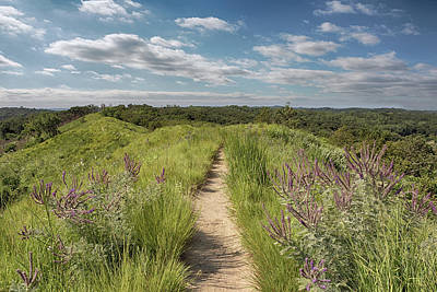 Art Print featuring the photograph Into The Loess Hills by Susan Rissi Tregoning