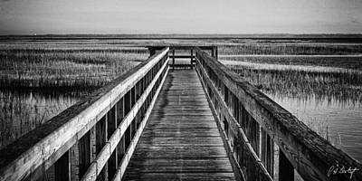 Lowcountry Marshes Photograph - Into The Marsh  by Phill Doherty