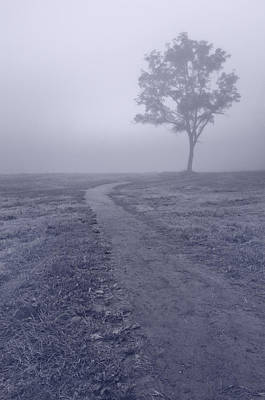 Into The Mist Bw Original