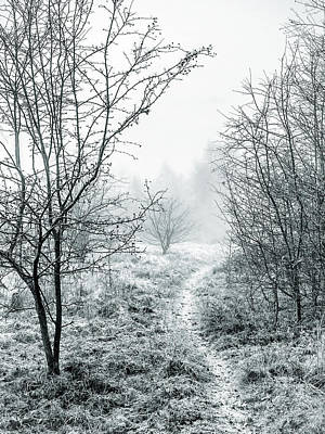 Photograph - Into The Mist by Nick Bywater