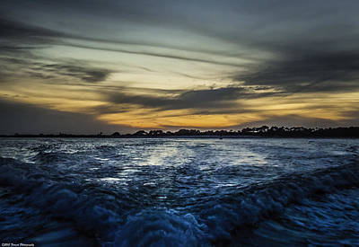 Photograph - Into The Night  by Debra Forand