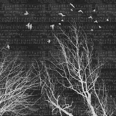 Music Score Digital Art - Into The Night - Inverted Tree And Bird Silhouettes On Music Score Background by SharaLee Art