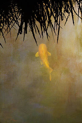 Koi Photograph - Into The Rushes by Rebecca Cozart