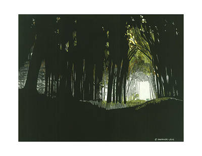 Wall Art - Drawing - Into The Shadows by Paul Shafranski