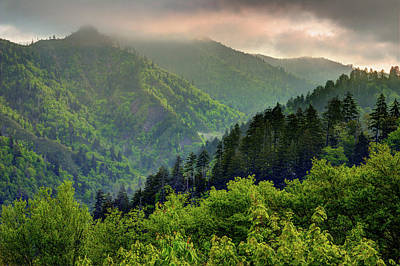 Photograph - Into The Smokies by Mike Eingle