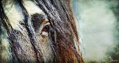 Gypsy Cob Digital Art - Into The Soul by Kimberly Stevens