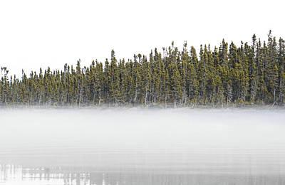 Photograph - Into The Wild by Paki O'Meara