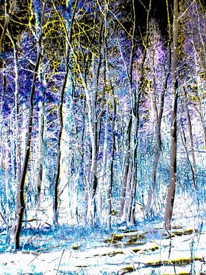 Painting - Into The Woods by Jennifer Lake