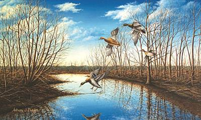 Waterfowl Painting - Intruder by Anthony J Padgett