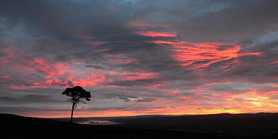 Photograph - Inverness Sunrise by Gavin MacRae