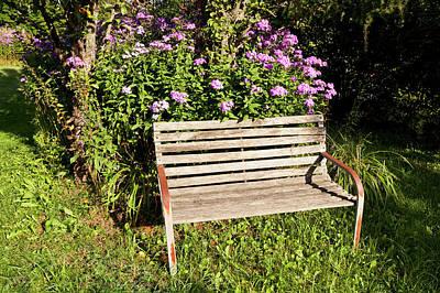 Photograph - Inviting Garden Bench by Alan L Graham