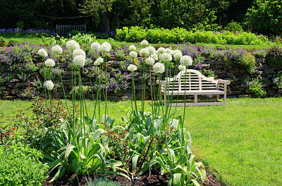 Photograph - Inviting Garden by Sally Weigand