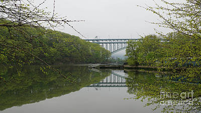 Photograph - Inwood Hill by Cole Thompson