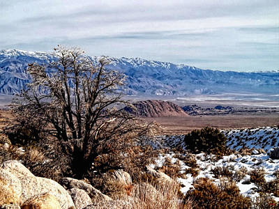 Photograph - Inyo Mountains - Owens Valley by Glenn McCarthy Art and Photography