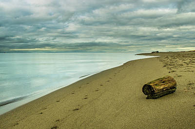 Photograph - Iona Beach Solitude by Brad Koop