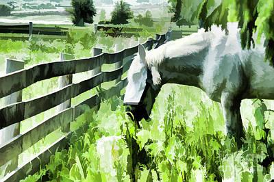 Draft Horse Digital Art - Iowa Farm Pasture And White Horse by Wilma Birdwell