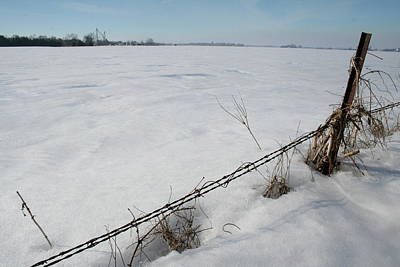 Photograph - Iowa Frozen Fence by Dylan Punke