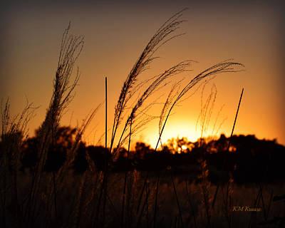 Photograph - Iowa Prairie Sunset by Kathy M Krause