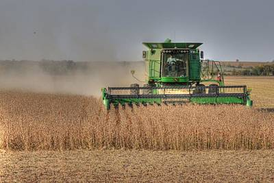 Iowa Soybean Harvest Art Print