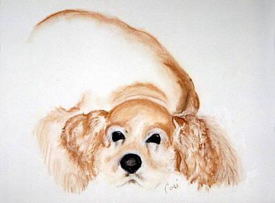 Cocker Spaniel Drawing - Ipo's Dream by Cori Solomon
