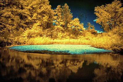 Photograph - Ir Landscape 1 by Lilia D