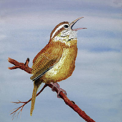 Print featuring the painting Irate Wren by Thom Glace