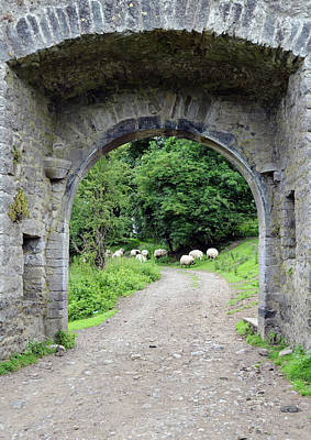 Rustic Photograph - Ireland Kells Priory Medieval Entrance Arch And Sheep County Kilkenny by Shawn O'Brien