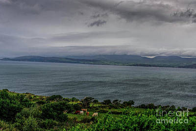 Beers On Tap - Ireland Viewed From the Ring of Kerry #4 by Elvis Vaughn