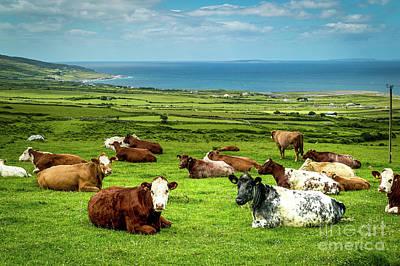 Photograph - Ireland - Westcoast by Juergen Klust