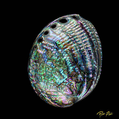 Photograph - Iridescence On The Half-shell by Rikk Flohr