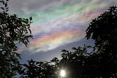 Photograph - Iridescent Clouds by Donna Kennedy