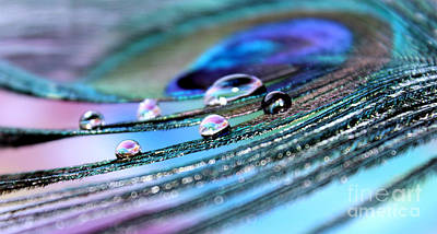 Iridescent Jewels Art Print