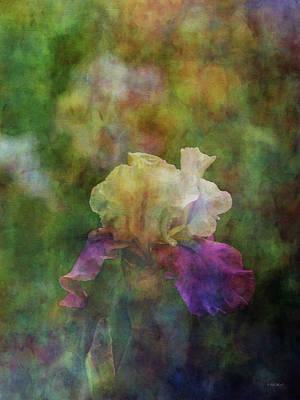 Photograph - Iris 0314 Idp_2 by Steven Ward