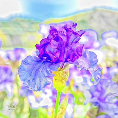Photograph - Iris 2 by Jim Thompson
