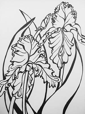 Drawing - Iris by Mastiff Studios