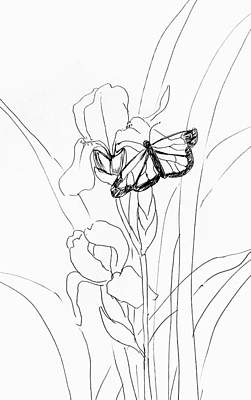 Drawing - Iris And Butterfly  by Hae Kim